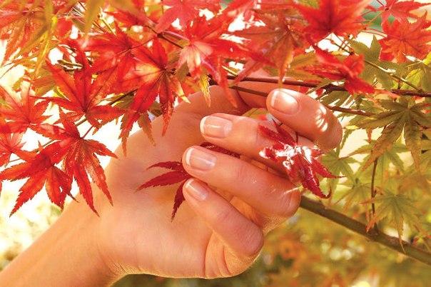 Наращивание ногтей укрепление ногтей